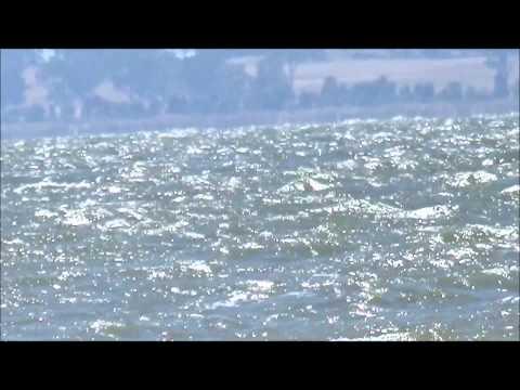 Waranga Basin Rushworth Vic,  At Its Worst, No Fishing To- Day.
