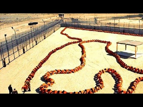 The Human Centipede 3 (Official Movie Film Cinema Theatrical Teaser Trailer) UNCENSORED | HD