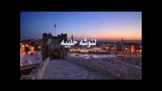 ام عبدو الحلبية - لئوشة حلبية