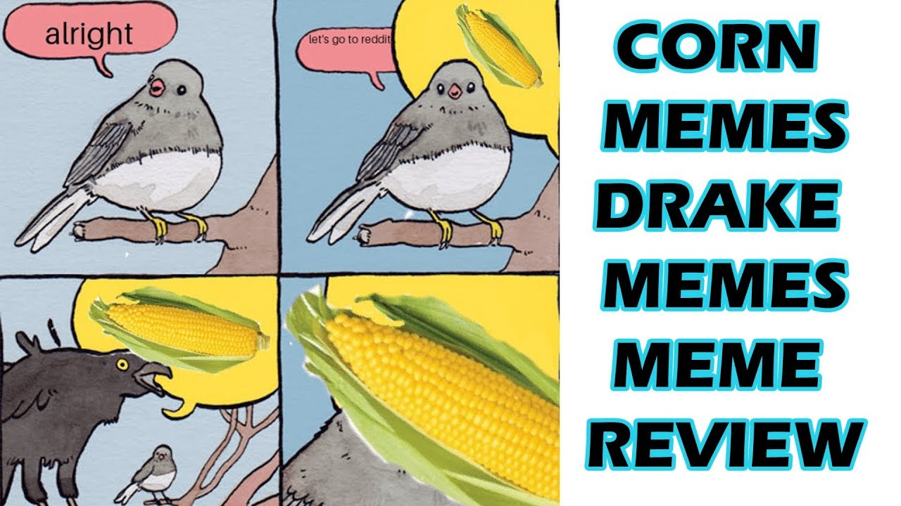Corn Memes Plus More Drake Scorpion Meme Review Youtube,Difference Between Chow Mein And Lo Mein