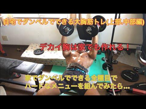 自宅ダンベルでできる胸トレ全集前編大胸筋上部・中部編 自宅でひたすらダンベル大胸筋トレを行ってみた