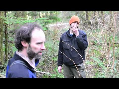 Truffle Hunting Dogs In Oregon