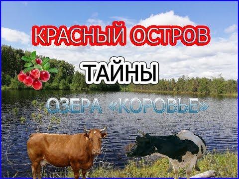 """ПОЕЗДКА НА КРАСНЫЙ ОСТРОВ / ОЗЕРО """"КОРОВЬЕ"""""""