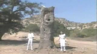 Andy & Kouros - Niloufar (Niloofar) | اندی و کورس - نیلوفر