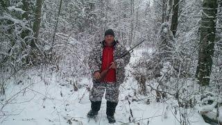 Охота на лося или Вологодские встречи 2015