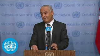 Security Council President on Central African Republic Attacks - Stakeout (13 January 2021)