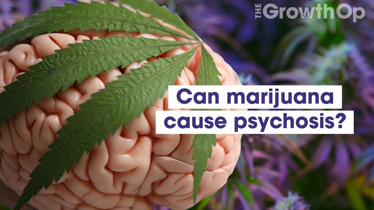 Can smoking weed lead to temporary personality loss? Here's what you
