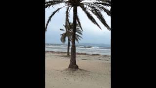 Sturm auf Mallorca 70-90 kmh