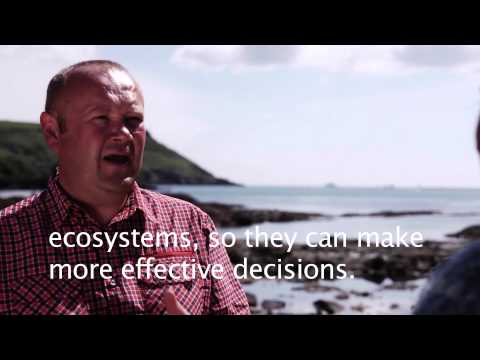 An Introduction to Marine Ecosystem Services Valuation