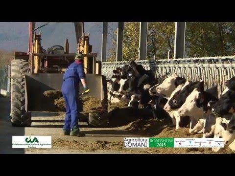Giovani e agricoltura nel Veneto