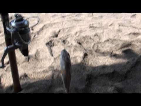 La Union fishing
