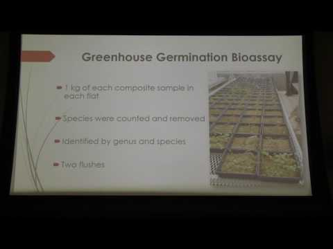 Kirby Peters : Soil seed banks on four organic grain crop farms in Central New York