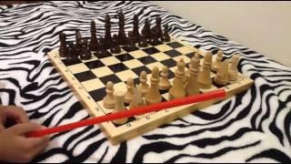 Шахматы, учимся играть урок 1