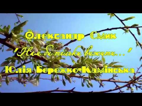 """Олександр Смик, Юлія Бережко-Камінська """"Нам би тільки вижити..."""""""