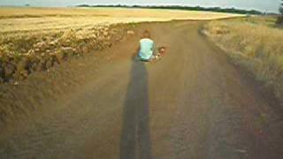 скачки такс(собак) в упряжке http://forum.gorod.dp.ua/showthread.php?t=134280 thumbnail