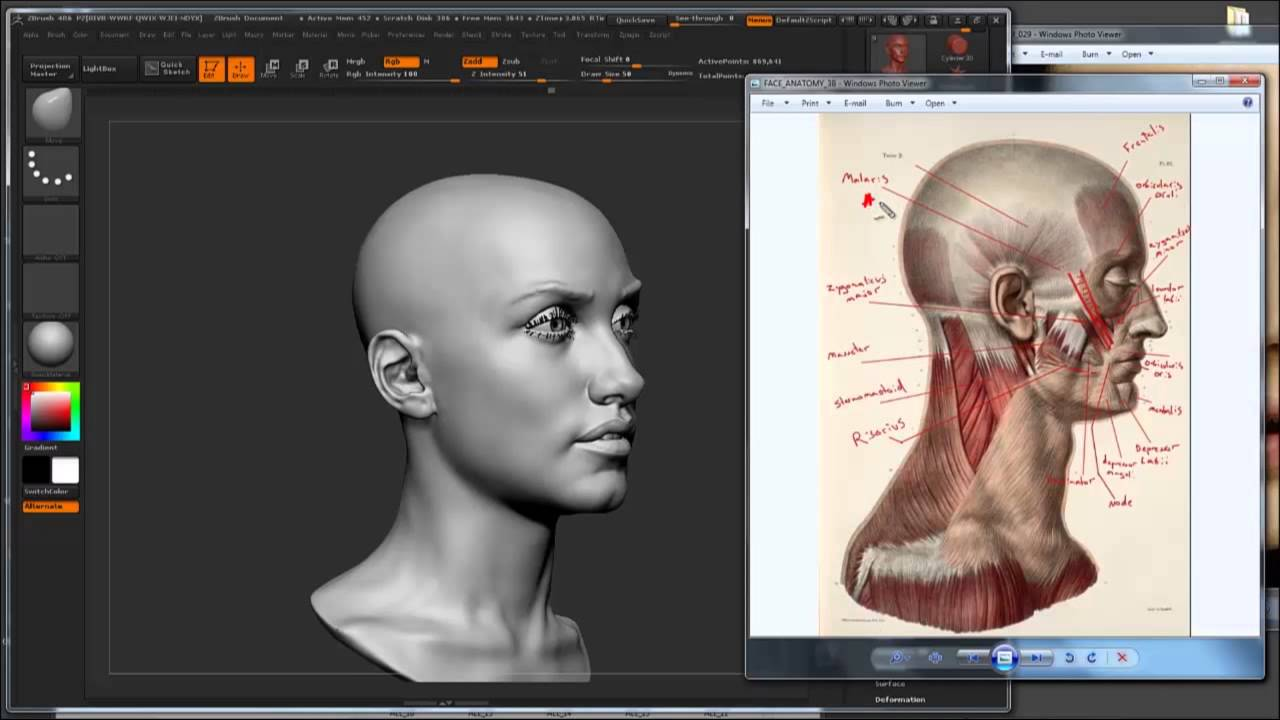 UArtsy Talk w/ Steve Lord: Facial Anatomy Primer - YouTube