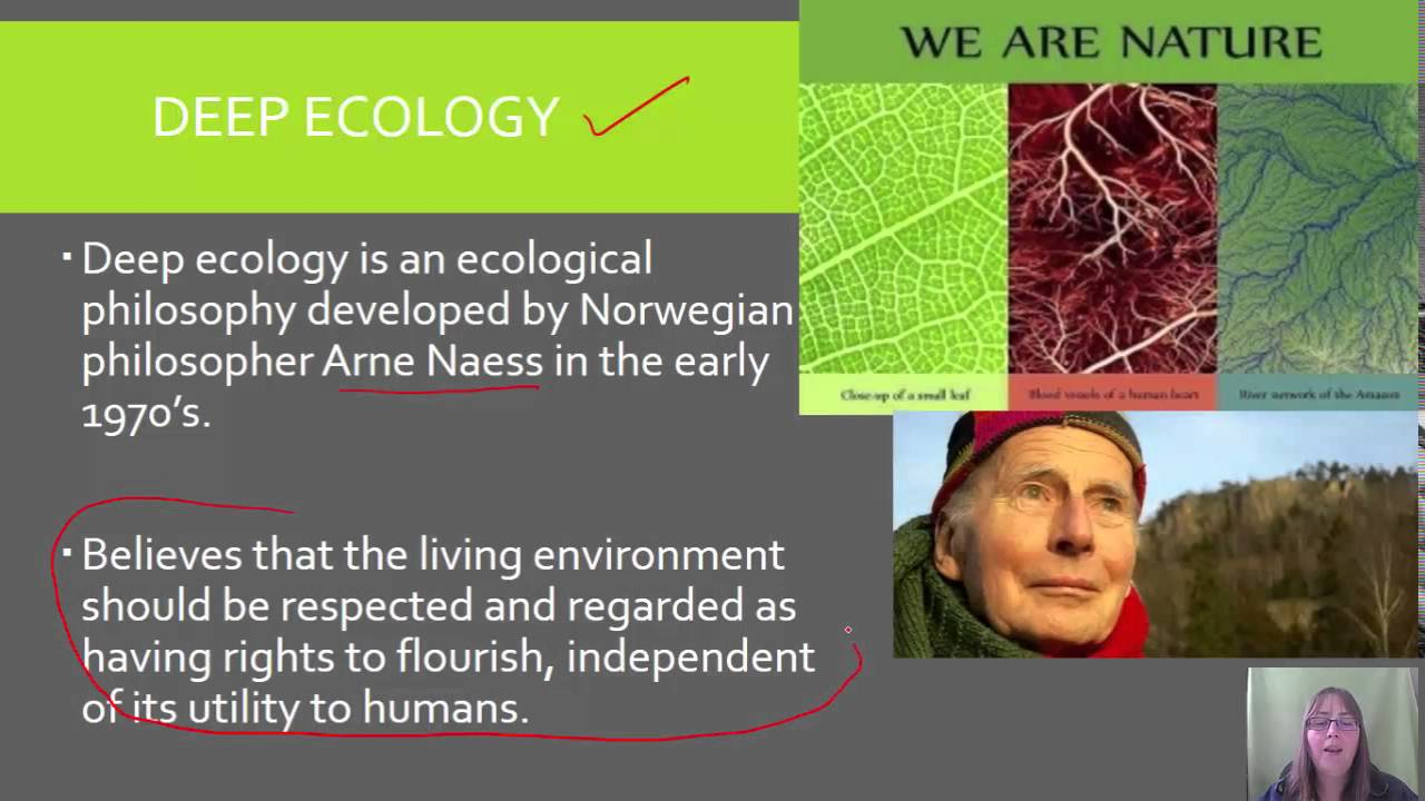 which environmental school of thought anthropocentric biocentric or deep ecology or ecocentric This article focuses on the role of ethical perspectives such as deep ecology and animal rights in relation to environmental education, arguing that such perspectives are well-placed to reposition.