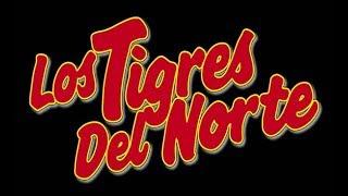 Los Tigres Del Norte/ El Contagio/ La Dieta/ El Celular + Bonus Track **La Creación**