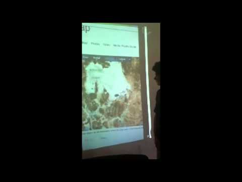 Bolivian Newscast Spanish School Project