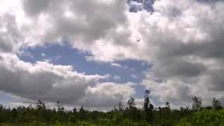 Hawaii county RC club, Dave flying his Great Planes Extra