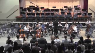 Wah Yan Symphonic Night 2014 - A. Vivaldi - Concerto for Two Cellos in G minor, RV.532
