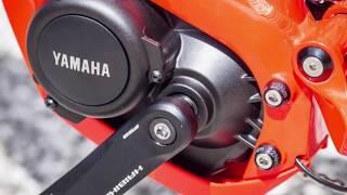 E-Pisode 150 : Entretien Moteur Yamaha