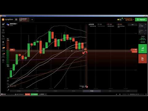 Option trading live prices