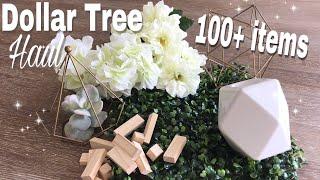 MASSIVE Dollar Tree Haul - over 100 items hauled!