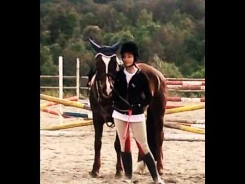 La storia di una ragazza e un cavallo morgana 3 youtube - Immagine di una ragazza a colori ...