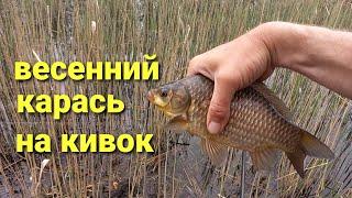 Рыбалка Ловля карася на боковой кивок весной Рыбалка на удочку весной