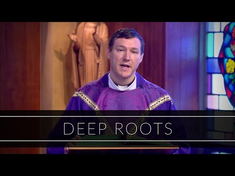 Deep Roots   Homily: Father Kevin Leaver