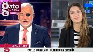Así les contamos en directo la detención de Carles Puigdemont