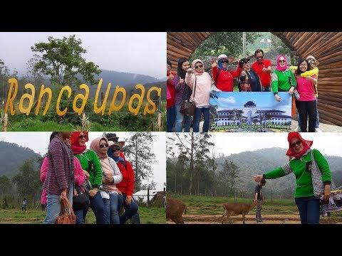kampung-cai-ranca-upas-ciwidey-bandung-#vlog