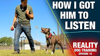 How to Train the MOST IMPORTANT Thing to Any Dog [REALITY DOG TRAINING EP: 15]