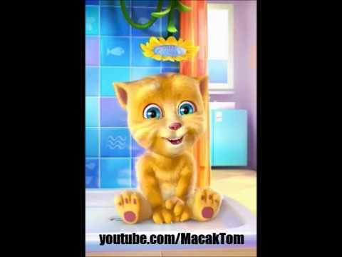 Ringe ringe raja - Pesma za decu - Mala maca peva