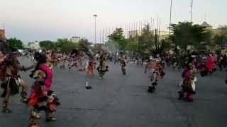 Danzas catedral de zapopan