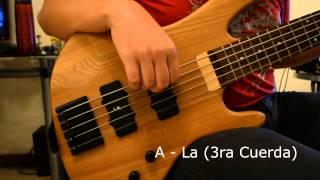 afinacin bajo elctrico 5 cuerdas referencia bass tuning 5 strings