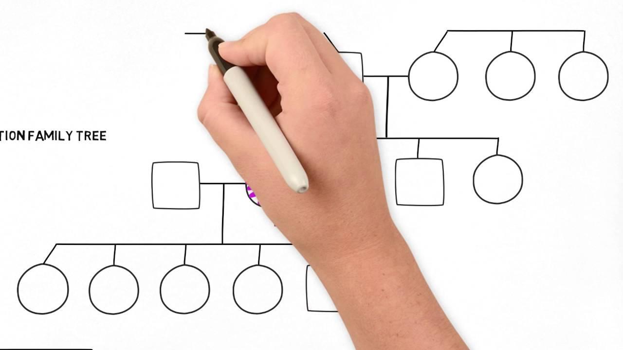 How Do I Draw A Family Tree Diagram 84 Virago Wiring To Part 2 Advanced Youtube