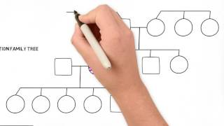 How to Draw a Family Tree - Part 2 Advanced