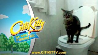 Successful Cat Toilet Training with CitiKitty