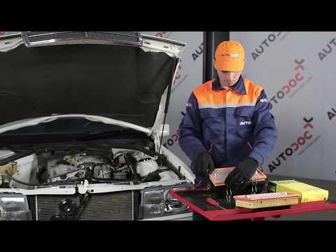 Mann Filter Luftfilter BMW C3394  MANN-FILTER C 3394