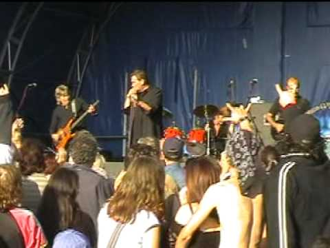 The Troggs Wild Thing live Basildon 2005