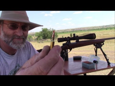 CZ 527, 17 Hornet, 125-275 Yard Dog Shooting.
