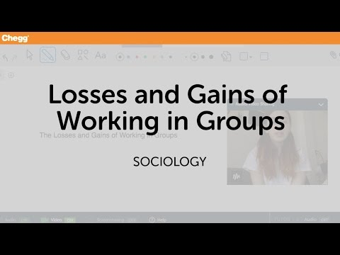 Losses and Gains of working in groups | Sociology | Chegg Tutors