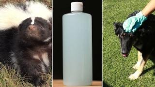 3-Ingredient Doggy Deskunker thumbnail