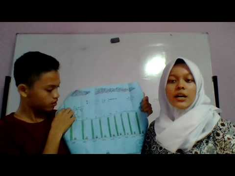 Annex Class, Cities and Provinces in Indonesia, Molan Nadya