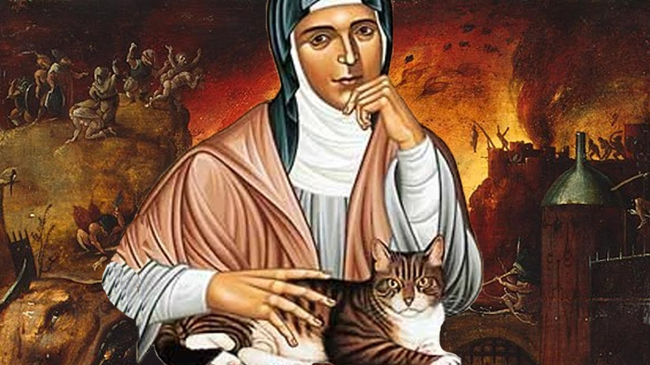 The Cat Nuns of France