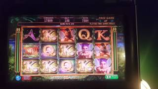 Secrets of the forest bonus slot machine.  Nice win!