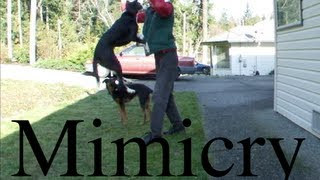 Mimicry Learning by Observation -Air Jump