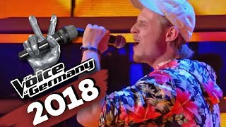 Die Fantastischen Vier - Tag am Meer (Dominik Hartz) | The Voice of Germany  | Blind Audition